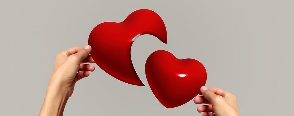 love test app