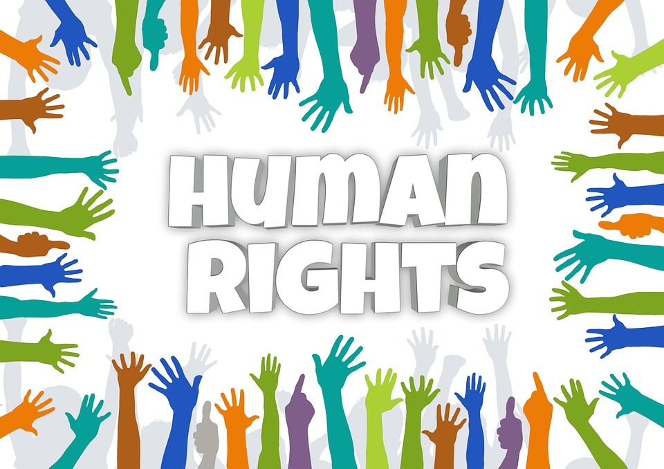 what are the basic human rights